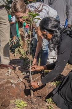 On Mandela Day, Greenpop's Director Lauren O'Donnell plants a Baobab Tree with the Zambian Minister of Tourism, Sylvia Masebo