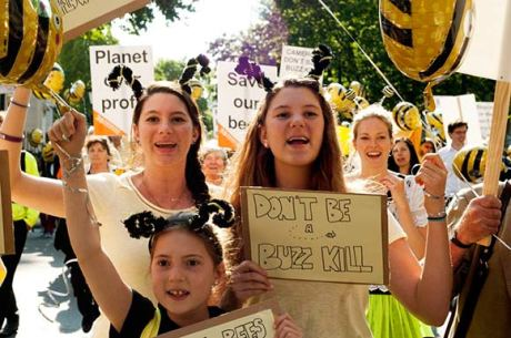 bee-protesters50k