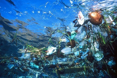 Gyre ocean rubbish